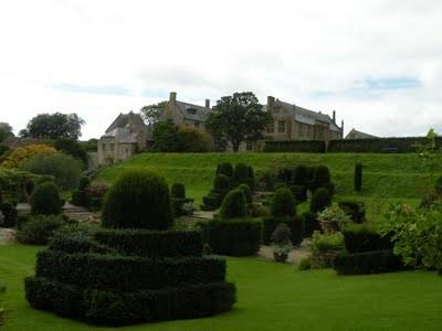 topiarydraughtsman