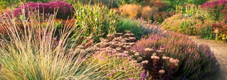 367 369 commonwealth ave everyblock boston for Garden designers at home noel kingsbury