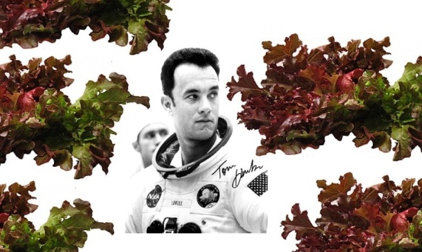 tom hanks a jim lovell red lettuce