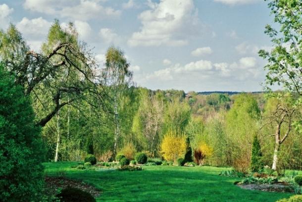 widok ogrodu w kwietniu