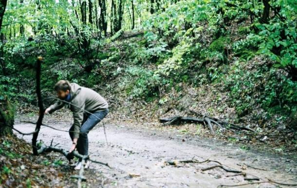 usuwanie powalonych gałęzi