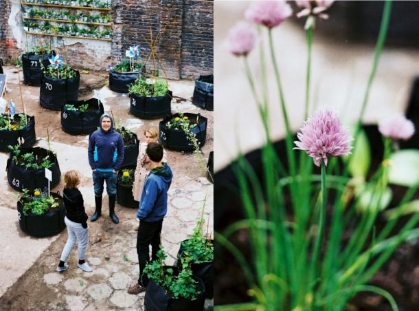 ekipa Miasto i ogród