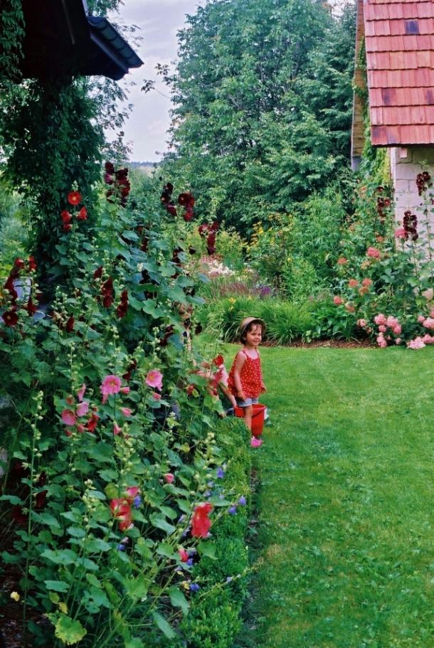 nasze podwórko